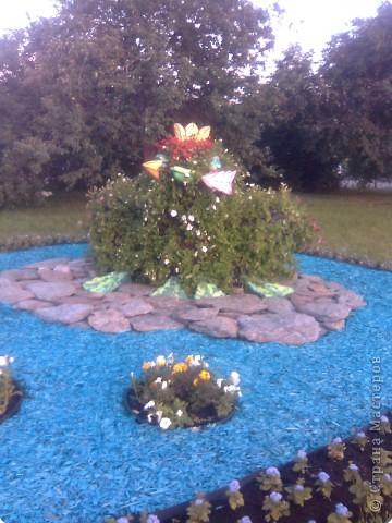 Царевна Лягушка. фото 1