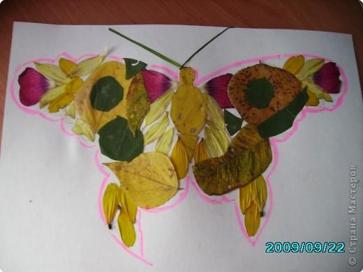 Волшебные крылья фото 3