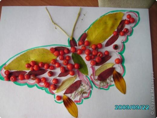 Волшебные крылья фото 5
