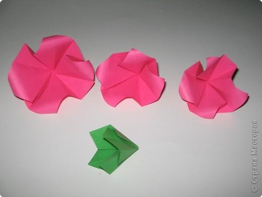 Оригами: И снова РОЗА. МК. фото 8