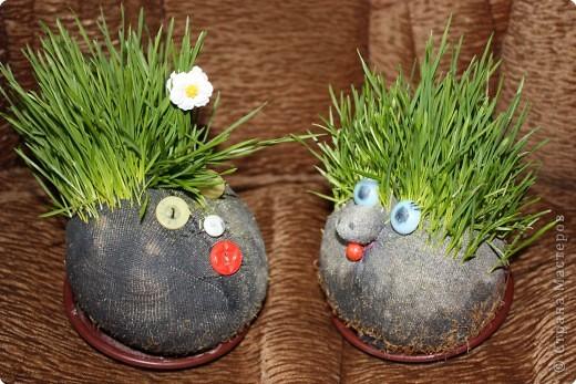 Веснянки