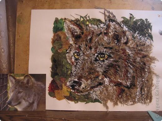 Мая подруга очень любит волков! В рамке он смотрелся на все 100%