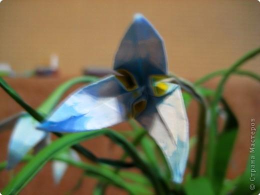 Мой трилистник! Бумага для листиков и стебля расписана в ручную,и сам цветок тоже потом подкрашивала,серединку и лепестки с чашелистиком.  фото 2