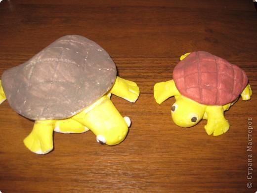 Вот такие чудесные черепашки получились у нас с сынишкой фото 1