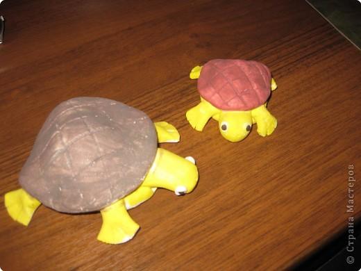 Вот такие чудесные черепашки получились у нас с сынишкой фото 2