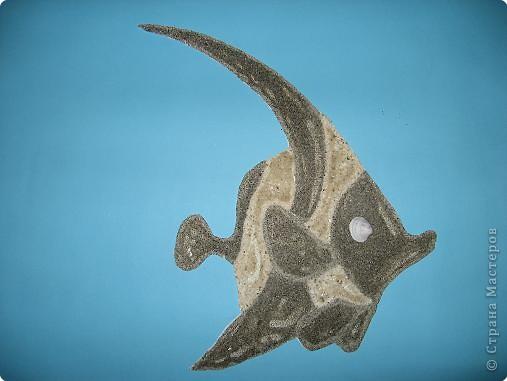 рыбка из ракушек фото 2