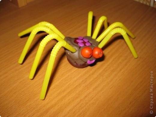Добрый паук, который не ловит мух (название со слов дочки). фото 1
