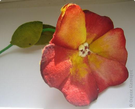 Не определена: Цветы из ватных дисков фото 5