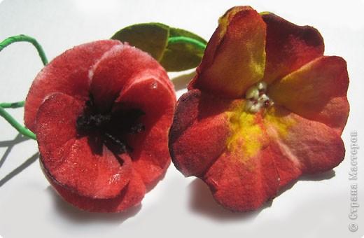 Не определена: Цветы из ватных дисков фото 7