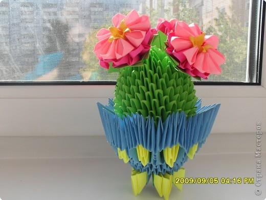 Вот и мой кактус зацвел!!! фото 1