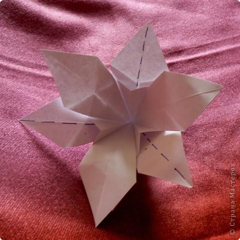 Лилии бывают разные... Вот такой цветок с 6 лепестками попробуем сделать. фото 17
