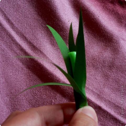 Лилии бывают разные... Вот такой цветок с 6 лепестками попробуем сделать. фото 21