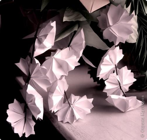 Вот и обещанный МК. Первый раз я делала такой цветок по книге Санбук Смит «Цветы Оригами». И там урок назывался «Барвинок – пестрые лоскутки». Потому и я назову его «Барвинок». Делать такой цветок не сложно. Самая большая проблема в том, что Барвинок очень маленький. Для одного цветка потребуется лист со стороной 5 см. На фото МК лист раза в 3 больше для наглядности. И вам советую взять на первый раз большой лист, чтобы освоиться и понять принцип складывания.   фото 19