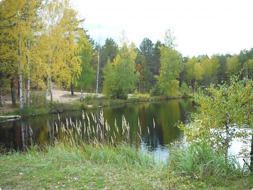 Буйство красок! Во Фролищах царствует Осень. фото 15