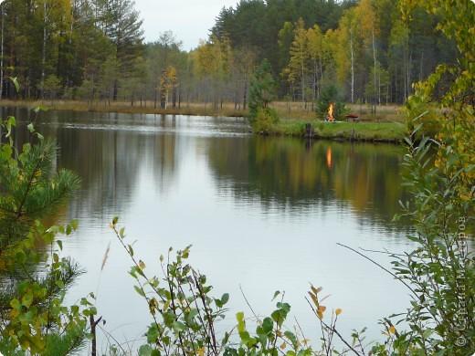 Буйство красок! Во Фролищах царствует Осень. фото 16