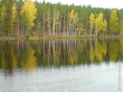 Буйство красок! Во Фролищах царствует Осень. фото 14