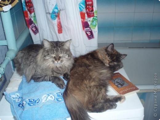 Две девицы под окном..... фото 14