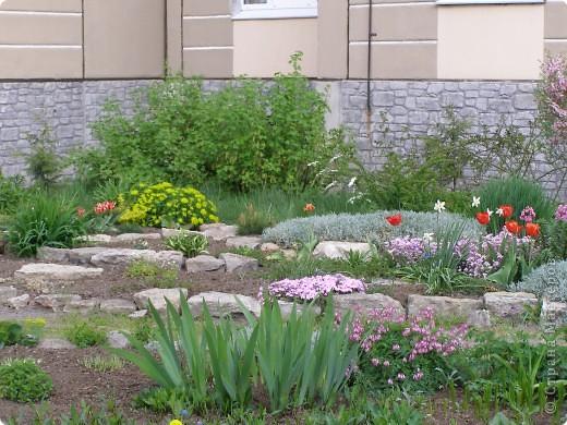 В городе весну можно и пропустить, если не было бы цветников и цветочников. Предлагаю вспомнить весну и возможно поучаствовать в озеленении своего города. фото 17