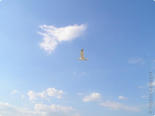 Это нереальное небо. фото 21