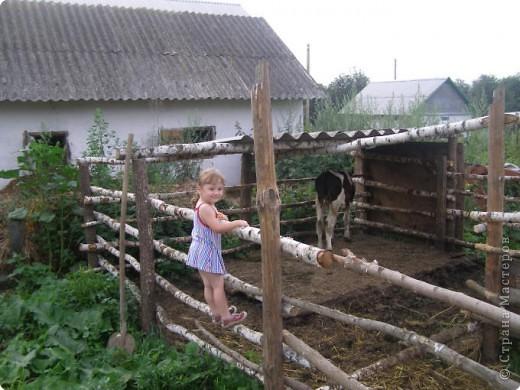 Деревня в кадре только одна. Ельково. Место замечательное. Находится на пике Среднерусской возвышенности. фото 30