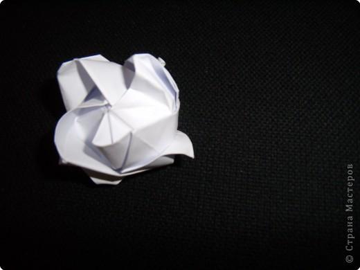 Готовая роза фото 38