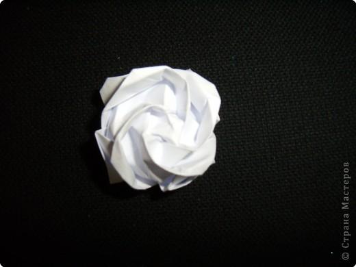 Готовая роза фото 1