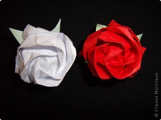 Оригами: Кавасаки роз фото 1