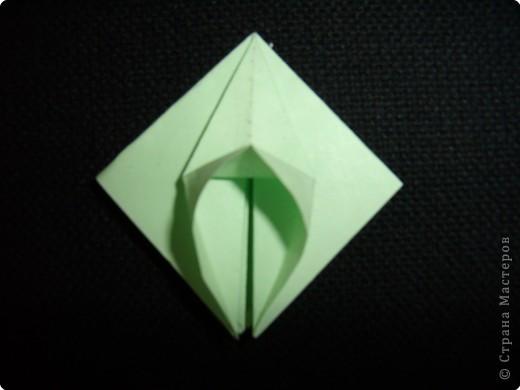 Чашелистки для розы Кавасаки, МК фото 8