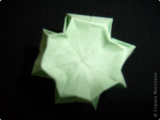 Чашелистки для розы Кавасаки, МК фото 15