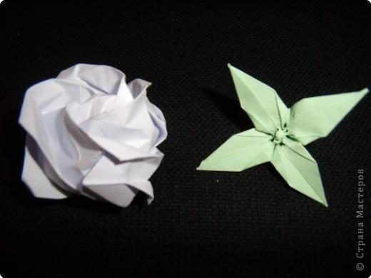 Чашелистки для розы Кавасаки, МК фото 27