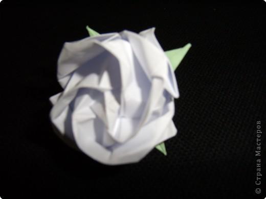 Чашелистки для розы Кавасаки, МК фото 29