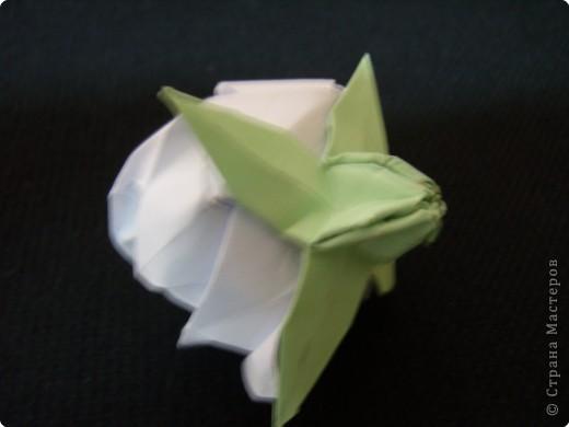 Чашелистки для розы Кавасаки, МК фото 30