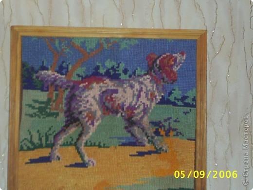 Вышивка крестом: Вышивка крестом фото 9
