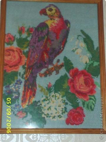 Вышивка крестом: Вышивка крестом фото 8