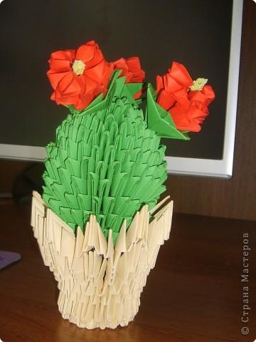 Оригами модульное: Цветочки кактусы фото 1