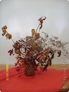 Лампа из тыквы  автор Ситкевич Дарья 2 класс фото 2