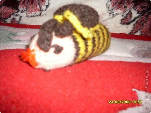 Вязание: Вязание фото 2