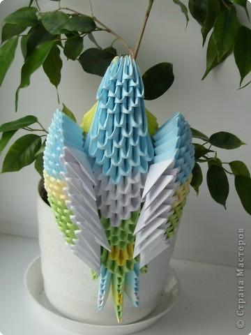 Оригами модульное: Попугайчик фото 2
