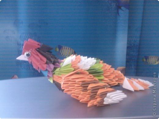Оригами модульное: Просто птичка  фото 4