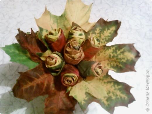 Розы для воспитательницы фото 1