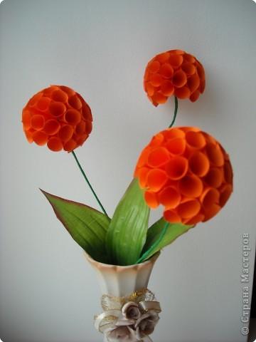 И опять цветы...