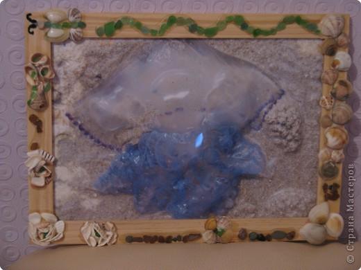 Рамка для медузы фото 1