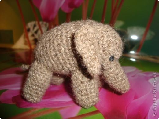 бабушка собирает слонов , вот сделала ей такой  подарок. фото 2