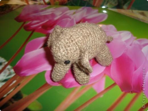 бабушка собирает слонов , вот сделала ей такой  подарок. фото 3
