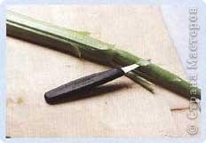 Мне очень понравилось это панно,но сама сделать я ещё не решилась.Вот выставляю МК,может кто-то решиться.  Для изготовления панно вам потребуются: дайкон, его можно заменить редькой, сладкий болгарский перец красного и желтого цветов, морковь, редис, сельдерей, петрушка, дыня, пищевой краситель, листья пальмы, зубочистки, нож, рама и обтянутый тканью лист полистирола млм пенопласта. Листья пальмы можно заменить на что угодно, хотя бы на перья зеленого лука.    фото 3