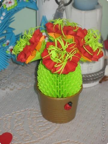 Оригами модульное: И у меня зацвел кактус)