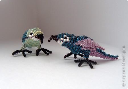 Бисероплетение: Попугаи и осел фото 1