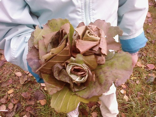 Каждый год осенью и весной я с моим классом (с детьми и их родителями) выезжаем на природу. Бываем в разных местах Татарстана. В этом году побывали в Марийской республике на озере Кичиер. фото 5