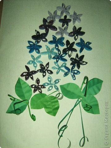 Цветы мальвы ( салфетки ). Делали Вероника, Настя  и Катя, 8лет фото 3