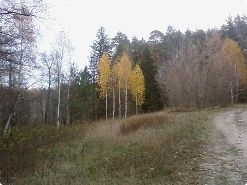 Каждый год осенью и весной я с моим классом (с детьми и их родителями) выезжаем на природу. Бываем в разных местах Татарстана. В этом году побывали в Марийской республике на озере Кичиер. фото 3